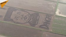 İtalyan Ressamdan Soya Tarlasında Kim Jong Un'un Dev Portresi
