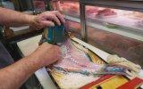 Japon Sokak Lezzeti  Papağan Balığı  Sashimi Okinawa