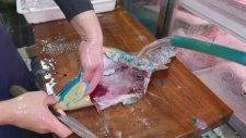 Japon Sokak Lezzeti - Papağan Balığı ( Sashimi Okinawa )