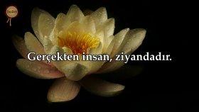 Asr Suresi - Hazza al Balushi | fussilet Kuran Merkezi