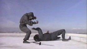 Revenge of the Ninja - End Fight