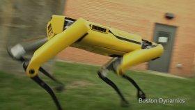 Yenilenmiş Mini Robot Abimiz