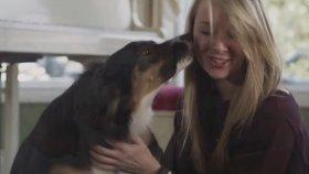 Köpeği ile Facebook'ta Bir Fotoğraf Paylaştı 2 Saat Sonra Evine Polis Geldi