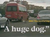 Rus Dashcam Videolarından Yapılan Film (The Road Movie)