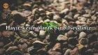Tekasur Suresi - Hazza al Balushi | fussilet Kuran Merkezi