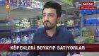 Köpekleri Boyayıp Cins Diye Satan Petshop - Adana