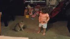 Armonika Çalan Çocuğu Kıçından Isıran Şapşal Kedi