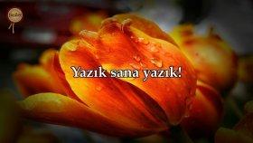 Kıyamet Suresi - Maher al Muaiqly (Kabe'nin Kuran Sesi) | fussilet Kuran Merkezi