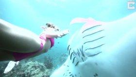 Dev Vatozla Beraber Yüzen Genç Kız