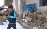 Doğuda Yaşayan Bir Çocuğun Günlük Yaşantısı  Ödüllü Kısa Film