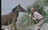 Dövüşe Dövüşe Öldüler  Serdar Gökhan & Aysun Güven 1974  78 Dk