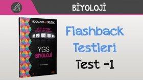 Flashback Testleri - Test -1