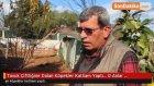 Tavuk Çiftliğine Dalan Köpekler Katliam Yaptı... O Anlar Kamerada