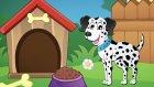 Köpekler Hep Hav Hav Der - Çocuklar İçin Eğlenceli Şarkılar
