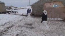 Hindilerini Kardan Adamlarla Koruyan Vatandaş