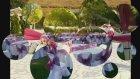 Eymir Nazlı Kır Bahçesi, Agora Rezervasyon