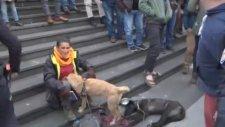 Trabzon'da Portekizli Turiste Yapılan Sözlü Saldırı