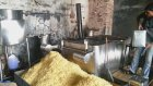 Hindistan'da Aşırı Hijyenik Patates Cipsi Fabrikası