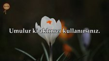 Hadid Suresi - Hazza al Balushi | fussilet Kuran Merkezi