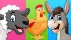 Çocuklar İçin Ciftlik Hayvanları Ve Yavruları - Okul Öncesi Eğitim Videosu