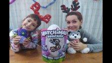 Hatchimals Yeni Seri İkiz Kedicikler. Surprıse Twins Cat. Toys Unboxing