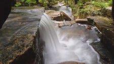 Manzara'nın Adresi Acadia Ulusal Parkı