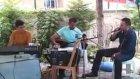 Mehmet Palamut - Yeşil Başlı Gövel Ördek......