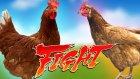 Komik Tavuk Dövüşleri