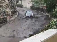 Seli Fırsata Çeviren Sürücü