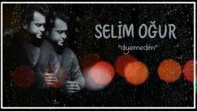 Selim Oğur - Diyemedim
