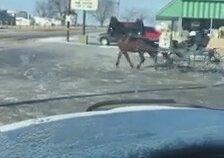 At Arabasıyla Dfrit Yapan Adam