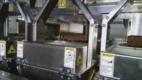 domates kurusu paketleme makinası