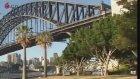 Sydney harbour scenery