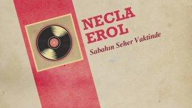 Necla Erol - Sabahın Seher Vaktinde (45'lik)