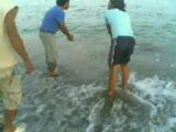 alanyada balık avı