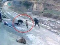 Yaban Domuzunun Kadını Öldürmesi - Çin