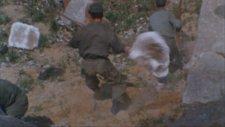 Ape (1976) Fragman