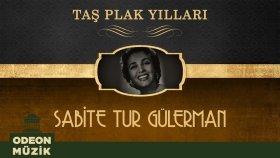 Sabite Tur Gulerman - Taş Plak Yılları