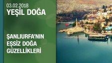 Şanlıurfa'nın Doğa Güzellikleri: Göbeklitepe ve Harran - Yeşil Doğa 03.02.2018
