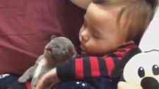 Yavru köpek ve Bebeğin Öğle Uykusu