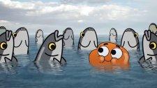 Gumball, Darwin'le Kavuşur 2. Kısım (Gumball Türkçe Dublaj | Cartoon Network)