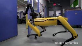 Boston Dynamics'in Kapıyı Açan Yapay Zekalı Sarı Robotu