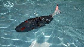Türk Mühendisler Akıllı Robot Balık Üretti
