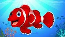 Kırmızı Balık Şarkısı - AfacanTV Çocuk Şarkıları