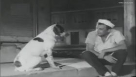 Sadri Alışık'ın Avare Filmindeki Muhteşem Repliği