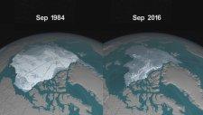 Buzulların yok oluyor olması