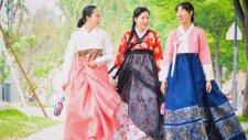 Kore Hakkında Bilmeniz Gereken 5 şey!