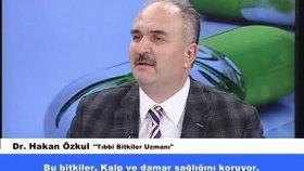 Dr. Hakan Özkul - Damar Tıkanıklığı Tedavisi - Şifalı Tıbbi Bitkiler