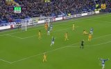 Cenk Tosun'un Brighton'a Attığı Fantastik Gol
