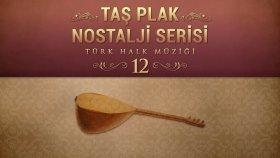 Çeşitli Sanatçılar - Taş Plak Nostalji Serisi, Vol. 12 (Türk Halk Müziği)